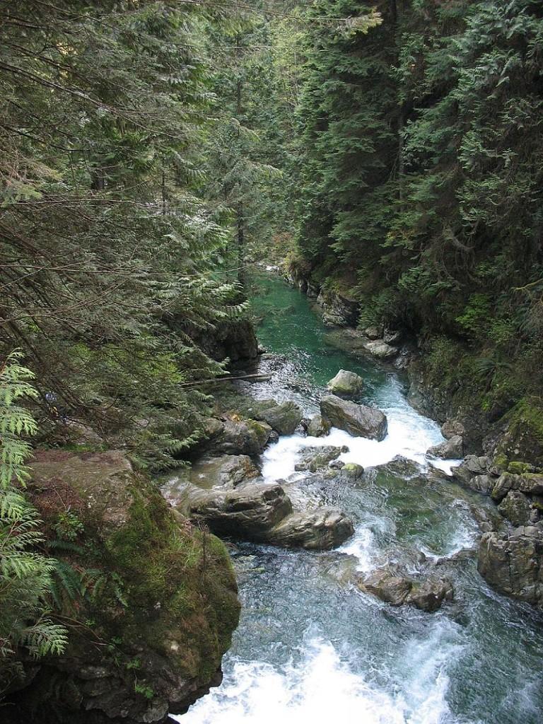 Lynn Canyon, Canada