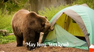 May long