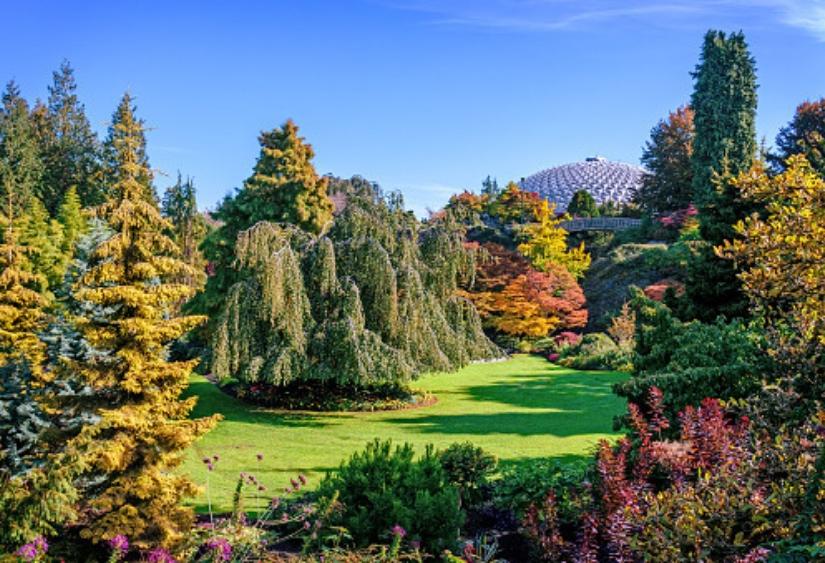 Queen Elizabeth park Vancouver summer