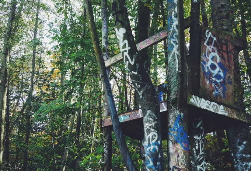 things to do in vancouver treehouse