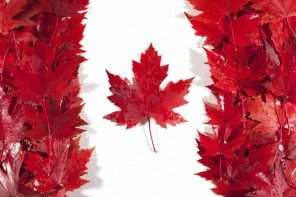 Canadian tree leaves