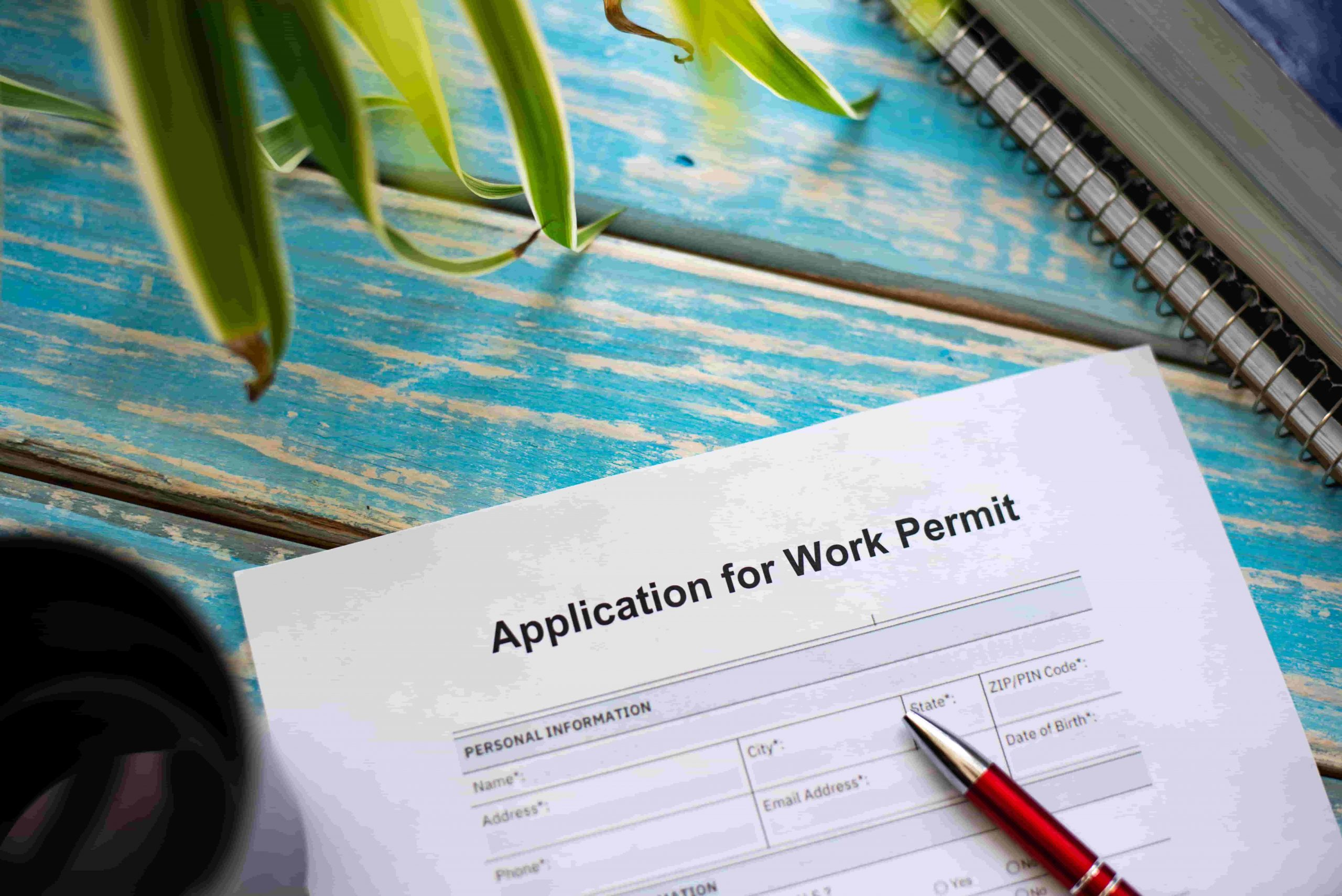 Work Permit Application Form