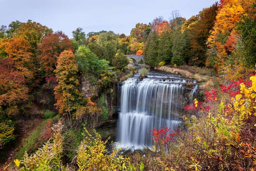 Webster Falls, Canada