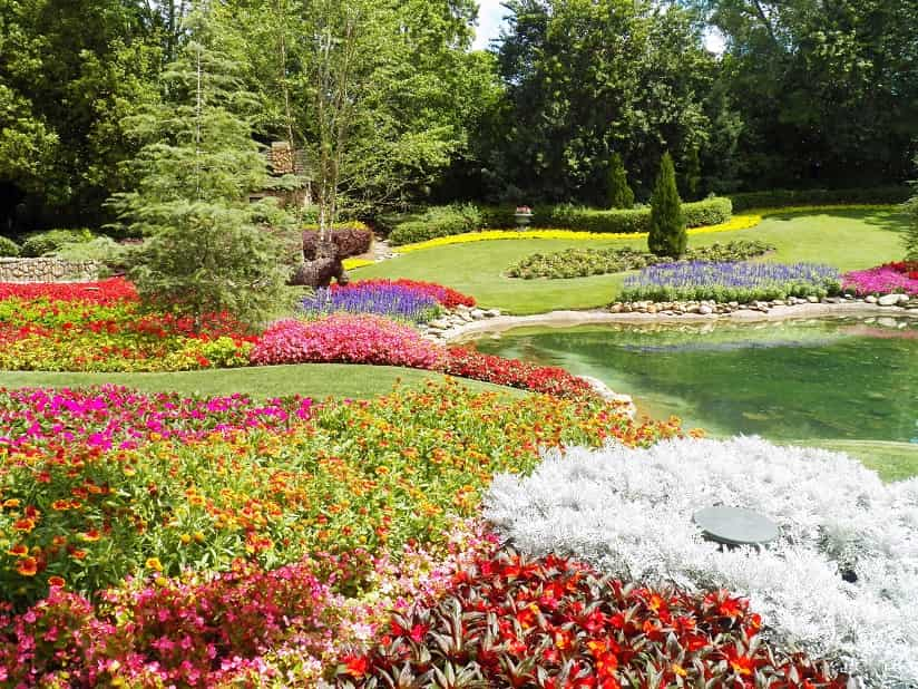flowers from the botanical garden in Hamilton, Ontario, Canada